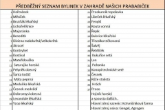seznam bylinek